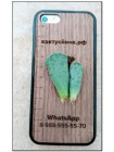 Листовой черенок Адромискус Купера (Adromischus cooperi)